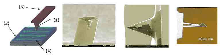 Atomic Force Microscope Cantilever